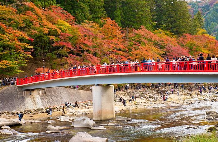 mùa lá đỏ nhật bản đẹp
